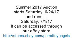 Summer 2017 Auction starts Saturday, 6/24/17 and runs �til Saturday, 7/1/17 It can be accessed through our eBay store http://stores.ebay.com/parrottoyangels