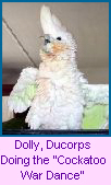 Dolly Ducorps doing the War Dance