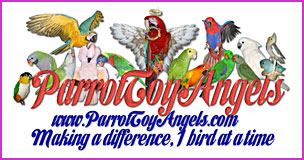 Parrot Toy Angels