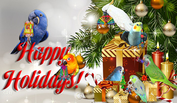 Happy Holidays from Parrot Toy Angels